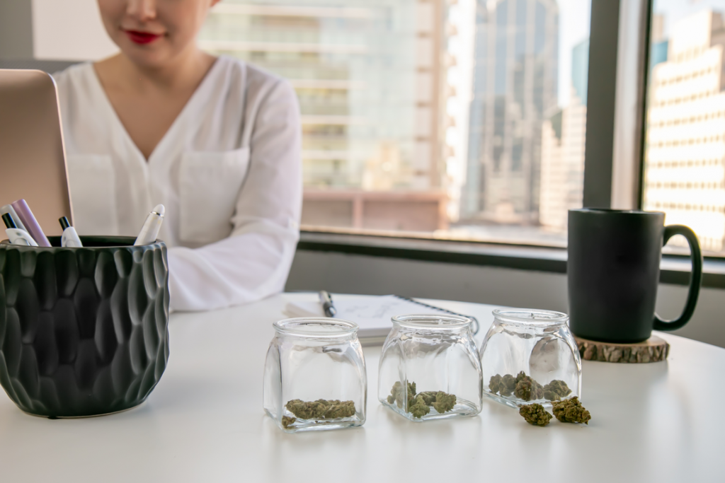 dicentra Cannabis Consulting (dCC) Announces Two New Online Training Programs to Help Cannabis Experts Comply with Regulatory Standards