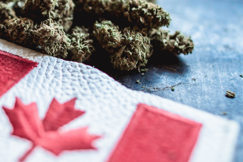 Cannabis Licensing Challenges: Critical Components to Consider When Submitting a Federal Licence Application